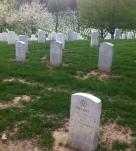 infant grave